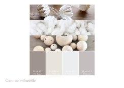 gamme-colorielle-decoration-salon-salle-a-manger-maison-individuelle-marseille